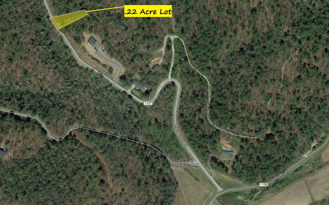 .22 Acre in Zirconia, NC – Just Outside of BOOMING Asheville Area!!  No HOA Fees – A Similar Property Nearby is Listed at $15,000!!  BUY TODAY FOR $7000!!