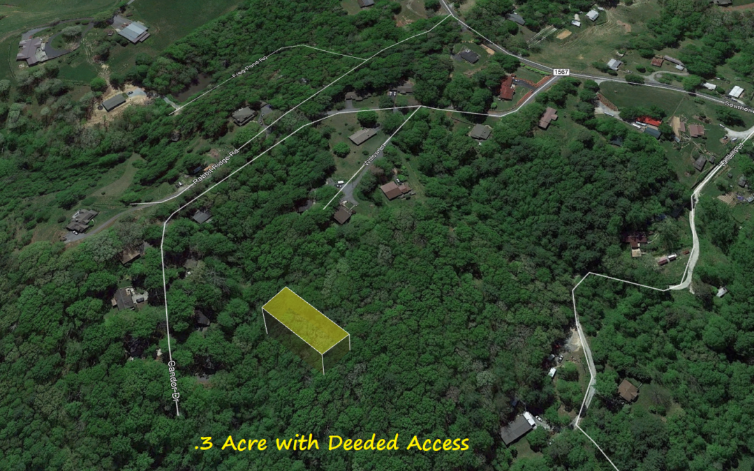 1/3 Acre in Fletcher, NC – Off the Grid Property with Legal Access – Buy for Under Half of County Value!!  $9000 with $500 Down or $8000 Cash!!