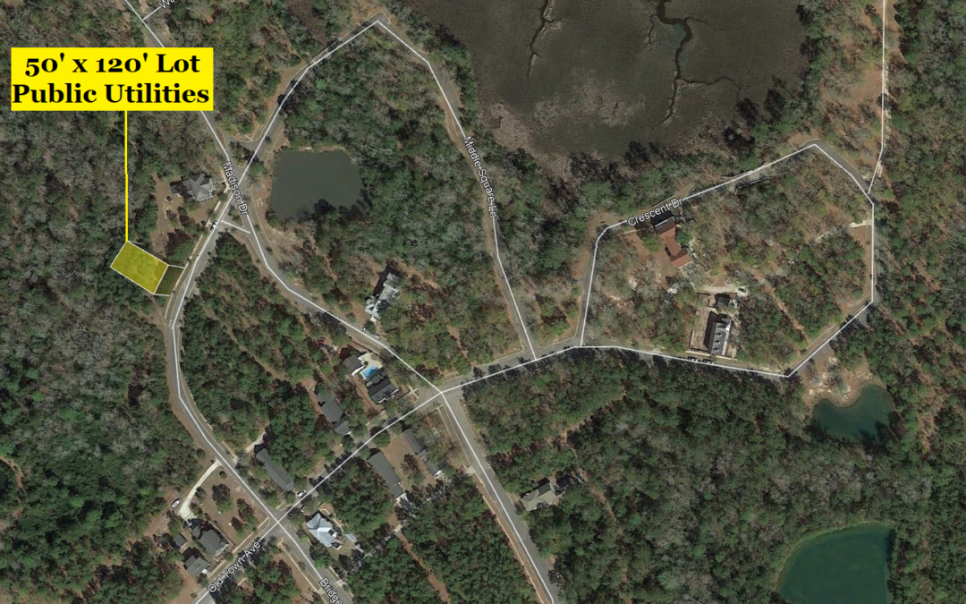 6000 Square Foot Building Lot in Georgetown, SC – Public Utilities – Comps at $11,000 and Up – BUY TODAY WITH FINANCING FOR $10,000 with $1000 Down or $8000 CASH!
